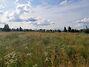 Земля под жилую застройку в селе Михайловка-Рубежовка, площадь 15 соток фото 4