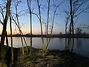 Земля под жилую застройку в селе Михайловка-Рубежовка, площадь 12.5 сотки фото 6