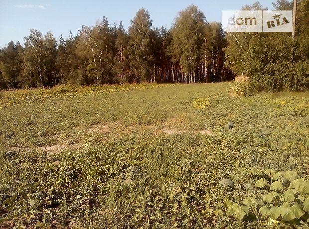 Продажа участка под жилую застройку, Житомирская, Коростышев, c.Городское