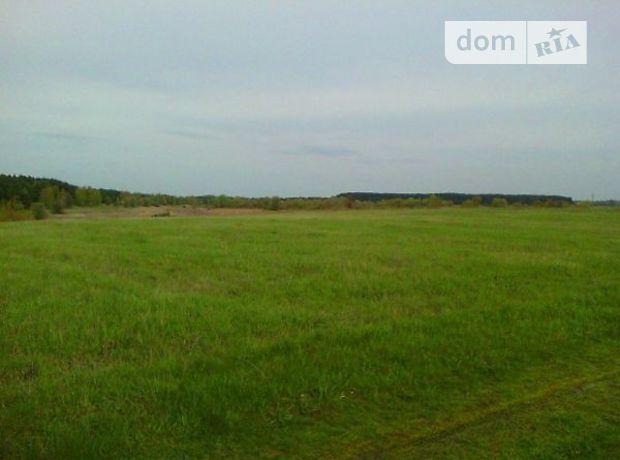 Земля под жилую застройку в Козельце, район Козелец, площадь 50 соток фото 1