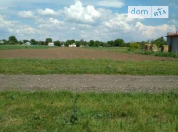 Земельный участок под жилую застройку в Козельце, площадь 25 соток фото 2