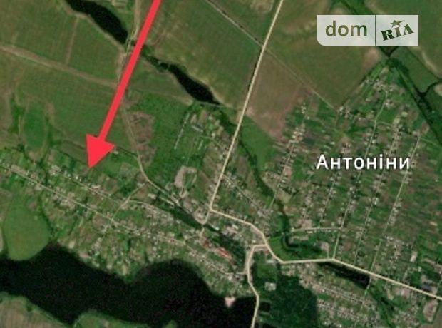 Земля під житлову забудову в селі Антоніни, площа 24 сотки фото 1