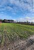 Земля под жилую застройку в селе Великие Млыновцы, площадь 12.36 сотки фото 1