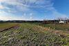 Земля под жилую застройку в селе Великие Млыновцы, площадь 12.36 сотки фото 8