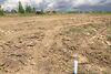 Земля под жилую застройку в селе Струмовка, площадь 12 соток фото 6