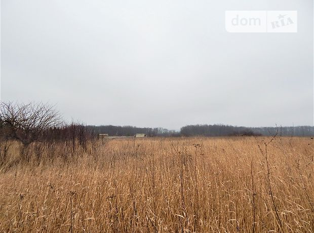 Земля под жилую застройку в селе Смородское, площадь 70 соток фото 1