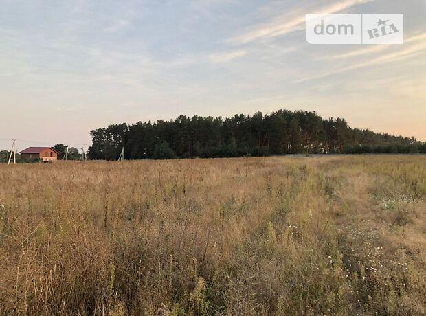 Земля под жилую застройку в селе Гавронщина, площадь 25 соток фото 1