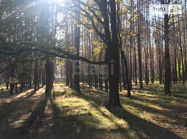 Земля под жилую застройку в селе Колонщина, площадь 25 соток фото 1