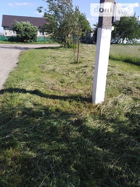 Земля под жилую застройку в селе Людвиновка, площадь 13 соток фото 1