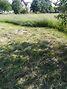 Земля под жилую застройку в селе Людвиновка, площадь 13 соток фото 2