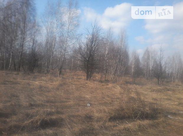 Земля под жилую застройку в селе Марьяновка, площадь 25 соток фото 1