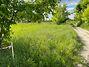 Земля под жилую застройку в селе Севериновка, площадь 15 соток фото 1