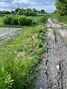 Земля под жилую застройку в селе Севериновка, площадь 15 соток фото 6