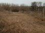 Земля под жилую застройку в Мироновке, район Мироновка, площадь 35 соток фото 2