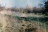 Земля под жилую застройку в Мостиске, район Мостиска, площадь 67 соток фото 3