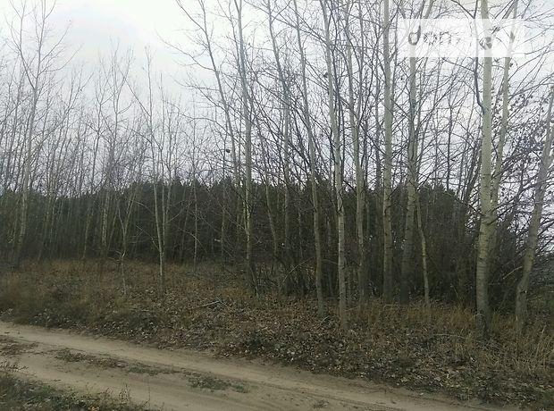 Земля под жилую застройку в селе Девички, площадь 40 соток фото 1