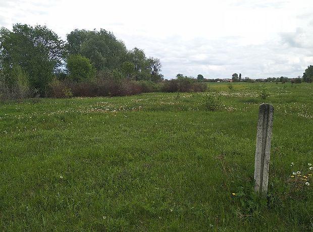 Земля под жилую застройку в селе Марковка, площадь 65 соток фото 1