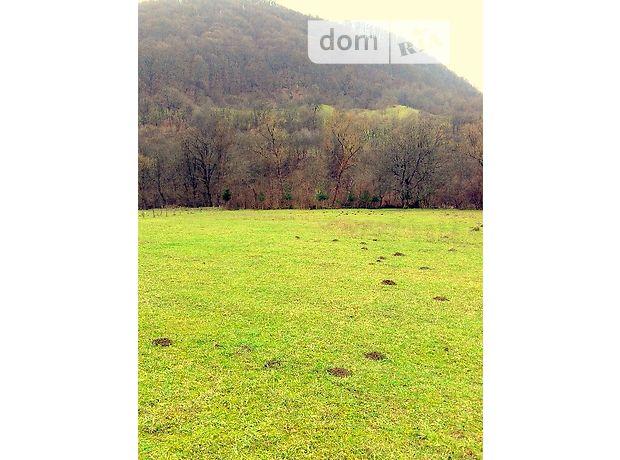 Земля под жилую застройку в селе Водица, площадь 45 соток фото 1