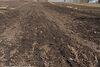 Земля под жилую застройку в селе Николаевка, площадь 22 сотки фото 6