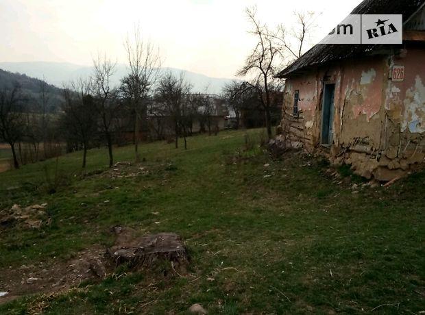один годок село голубиное закарпатье фото прилетела