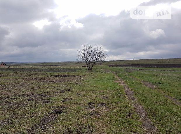Земля под жилую застройку в селе Шляхтинци, площадь 25 соток фото 1