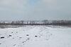 Земля под жилую застройку в селе Великие Гаи, площадь 0.45 Га фото 5