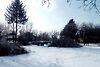 Земля под жилую застройку в селе Великие Гаи, площадь 0.45 Га фото 7