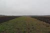 Земля под жилую застройку в селе Ангеловка, площадь 15 соток фото 5