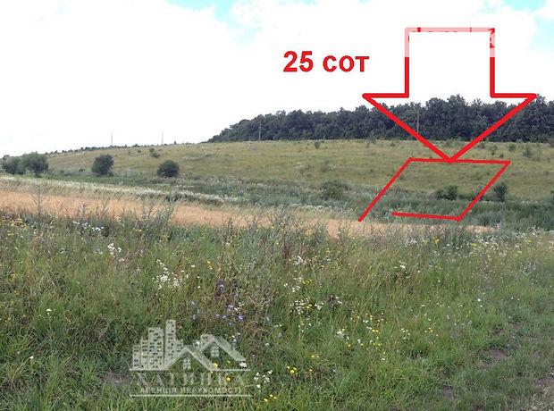 Земля под жилую застройку в селе Байковцы, площадь 25 соток фото 1
