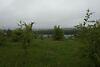 Земля под жилую застройку в селе Байковцы, площадь 8 соток фото 6