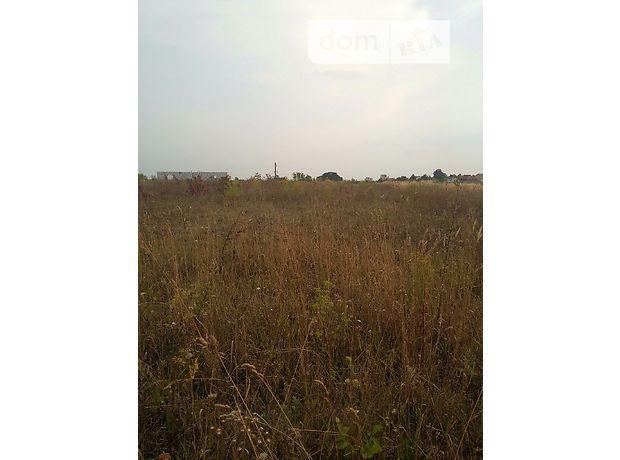 Земля под жилую застройку в селе Байковцы, площадь 10 соток фото 2