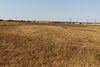 Земля под жилую застройку в селе Била, площадь 18 соток фото 3