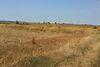 Земля под жилую застройку в селе Била, площадь 18 соток фото 5