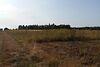 Земля под жилую застройку в селе Била, площадь 18 соток фото 6