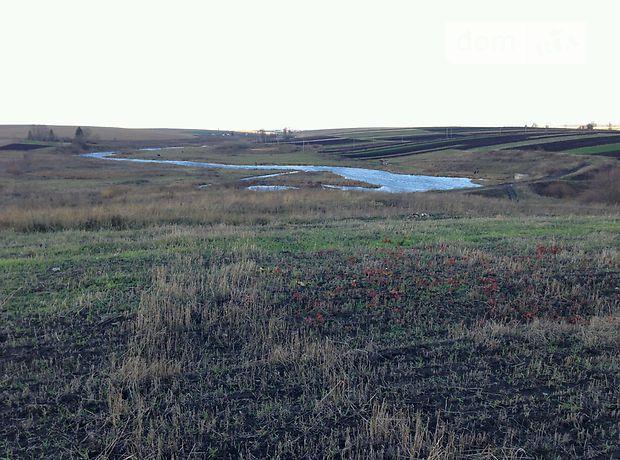 Земля под жилую застройку в селе Довжанка, площадь 25 соток фото 1