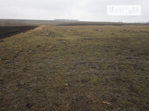 Земля под жилую застройку в селе Драгановка, площадь 15 соток фото 1