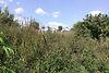 Земля под жилую застройку в селе Ивачев Долишний, площадь 30 соток фото 7
