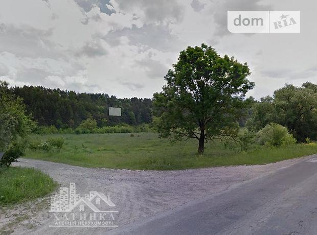 Земля под жилую застройку в селе Ивачив, площадь 35 соток фото 1