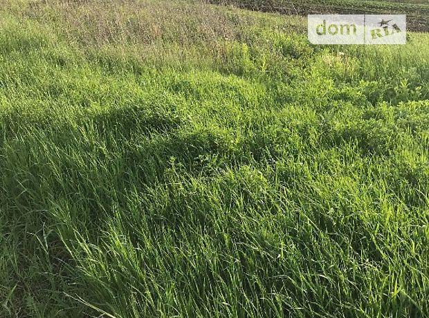 Земля под жилую застройку в селе Петриков, площадь 10 соток фото 1