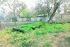 Земля под жилую застройку в селе Подгородное, площадь 6 соток фото 4