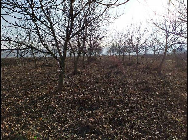 Земля под жилую застройку в селе Толстолуг, площадь 25 соток фото 1