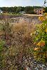 Земля под жилую застройку в селе Великие Бирки, площадь 15 соток фото 8