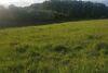 Земля под жилую застройку в селе Великие Гаи, площадь 8 соток фото 3