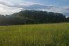 Земля под жилую застройку в селе Великие Гаи, площадь 8 соток фото 4