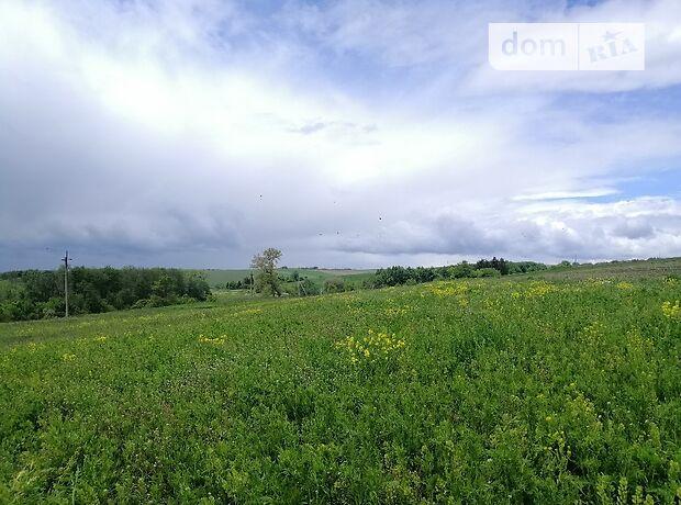 Земля под жилую застройку в селе Великий Глубочек, площадь 42 сотки фото 1