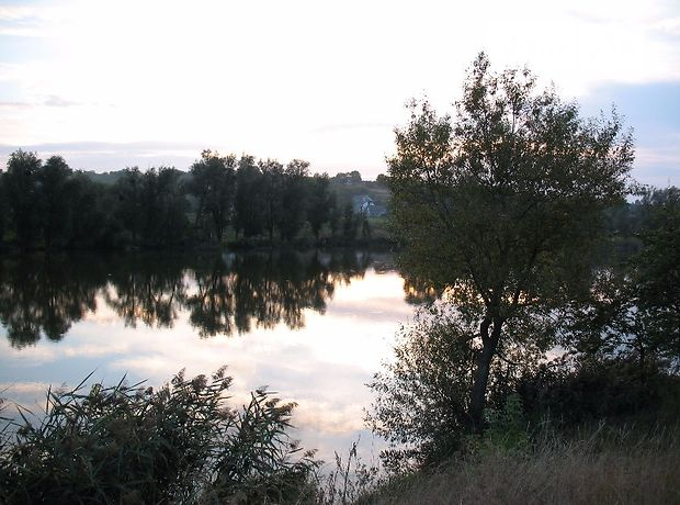 Земля под жилую застройку в селе Тележинцы, площадь 22 сотки фото 1