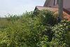 Земля под жилую застройку в Ужгороде, район БАМ, площадь 9 соток фото 4
