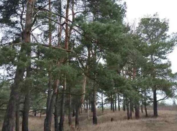 Земля под жилую застройку в селе Даниловка, площадь 15 соток фото 1
