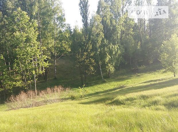 Земля под жилую застройку в селе Деревянки, площадь 650 соток фото 1