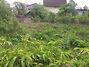 Земля под жилую застройку в селе Глеваха, площадь 6 соток фото 3